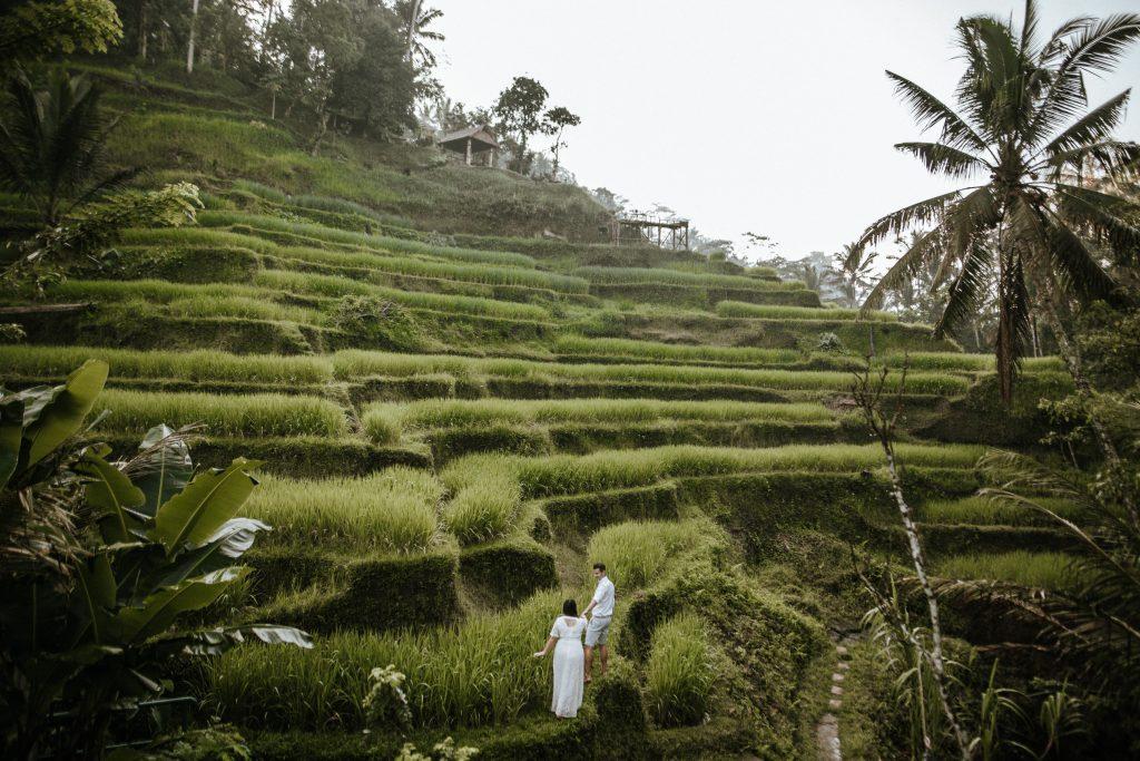 Hochzeitsfotos in den Reisterrassen Bali